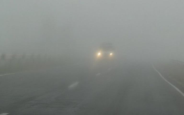 страшная история тень в тумане